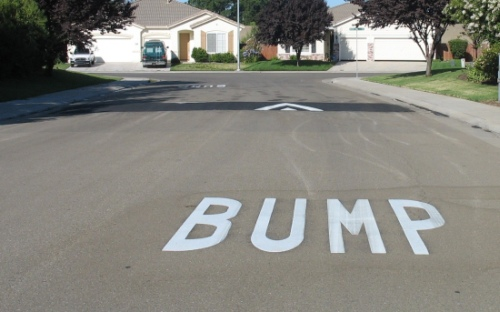 Image result for bump in the road